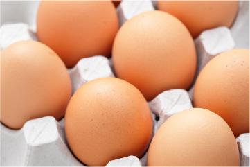 cosmos eggs